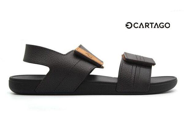 Cartago-C11586-Brown_0002 copia