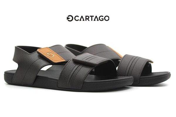 Cartago-C11586-Brown_0003 copia