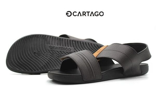 Cartago-C11586-Brown_0004 copia