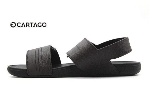 Cartago-C11586-Brown_0005 copia